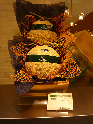 A pair of melons in a presentation box – ready to be given as a gift